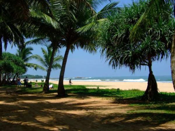 Самостоятельно на Шри-Ланку