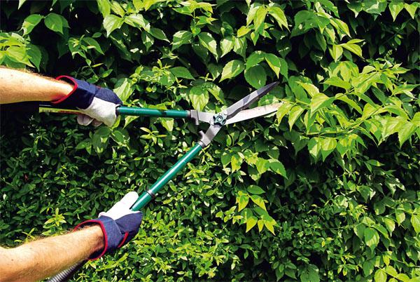 Секаторы и ручные кусторезы для сада