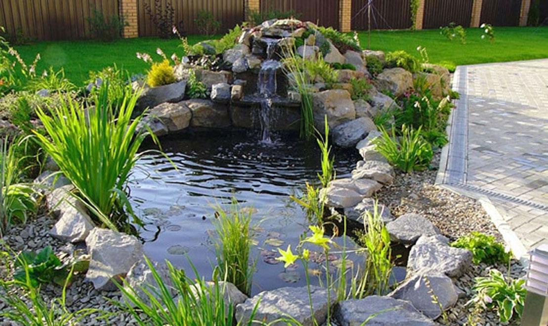 Создание декоративного водоема на участке: основные сложности